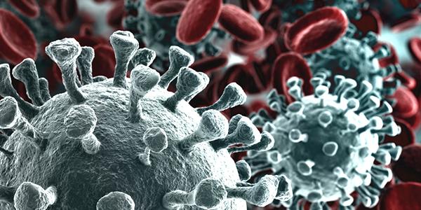 Informazioni COVID-19 ( Coronavirus )